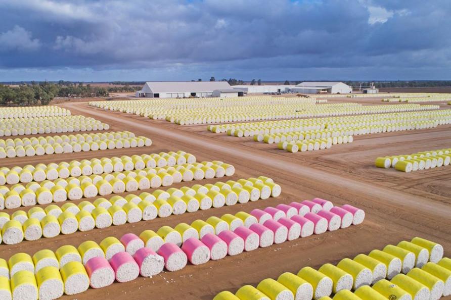 ΑΥΣΤΡΑΛΙΑ: Άλλο ένα έτος υψηλής κερδοφορίας για το βαμβάκι