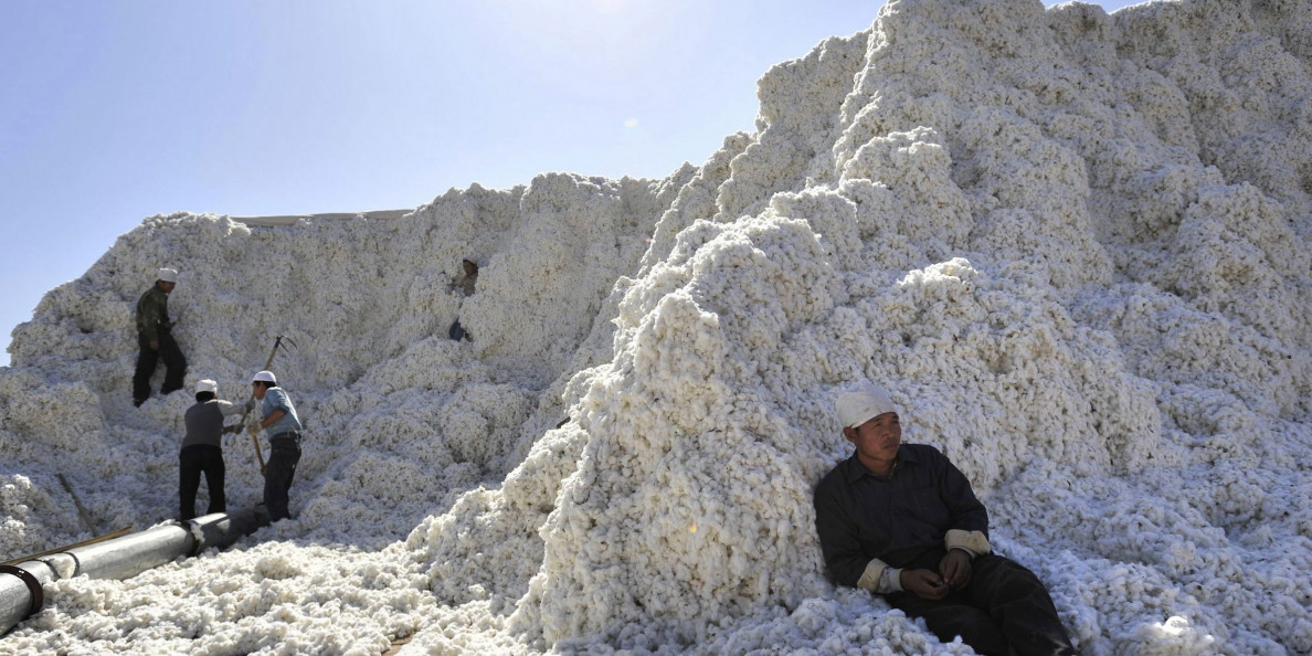 Big events during 2018 China state cotton auction and statistics analysis