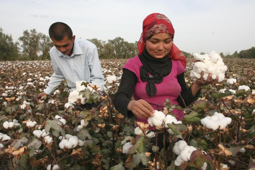 CHINA'S COTTON CONSUMPTION APPEARS TO BE SLOWING AND DEMAND IS SOFT