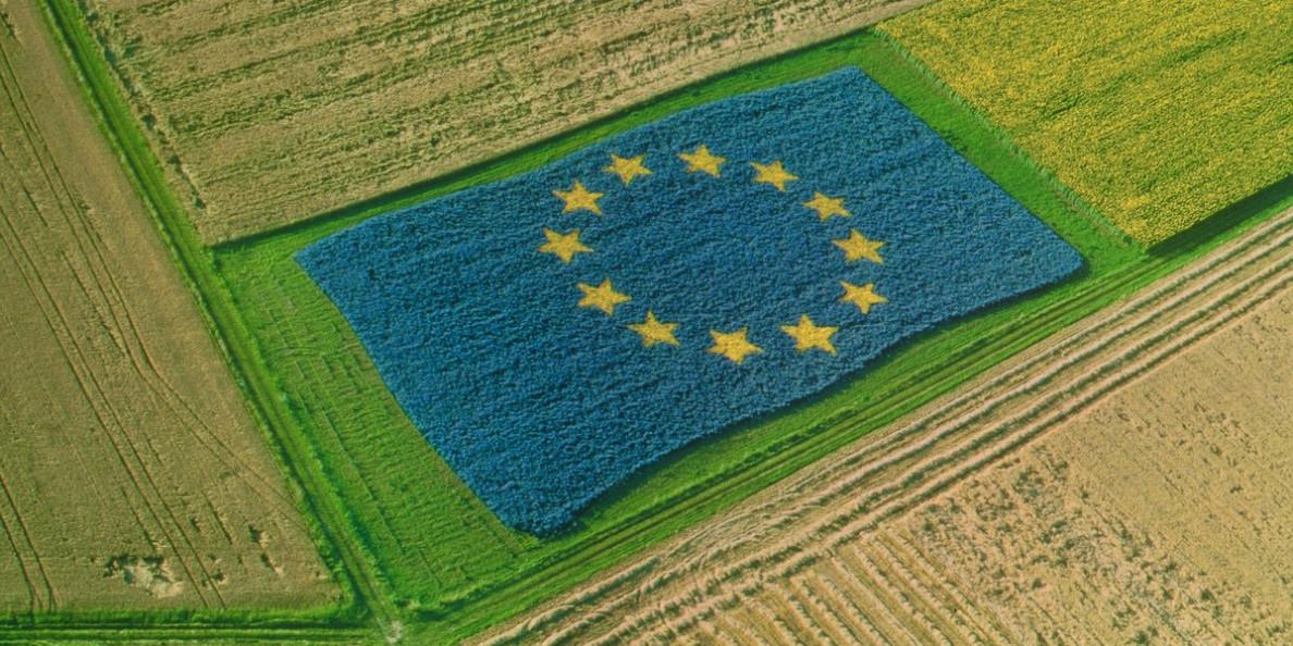 EU AGRICULTURAL OUTLOOK