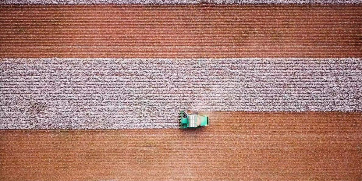 "Video παρουσίασης του ""EU cotton"""