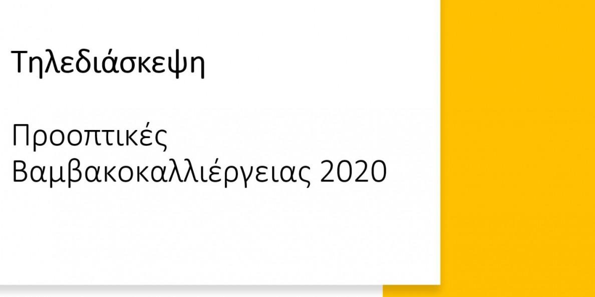 "Tηλεδιάσκεψη ""Προοπτικές βαμβακοκαλλιέργειας 2020"""